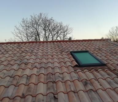 Le démoussage de toiture contre les infiltrations d'eau et la dégradation du toit